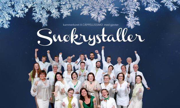 Default snokrystaller2016 web banner 984x588